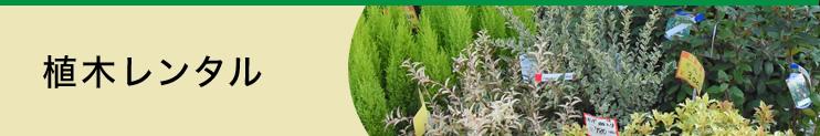 植木レンタル